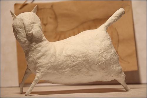 Сушим и ура - кот-альбинос готов!