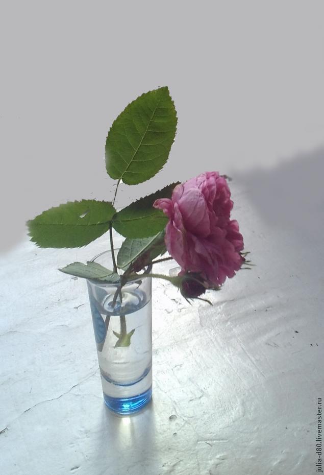 Цветы в чашке: картинки и фото цветы в чашке, скачать изображения на