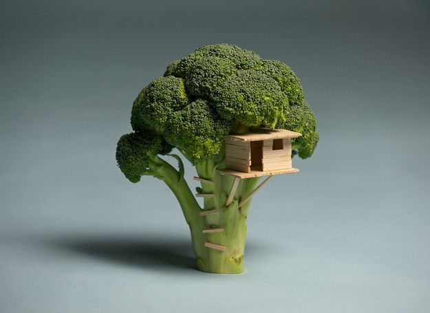 A tiny world #treehouse