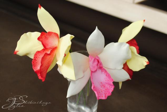 фом, фоам, фоамиран, цветы из фоамирана, орхидея, орхидея из фоамирана, мастер-класс фоамиран, мк фоамиран