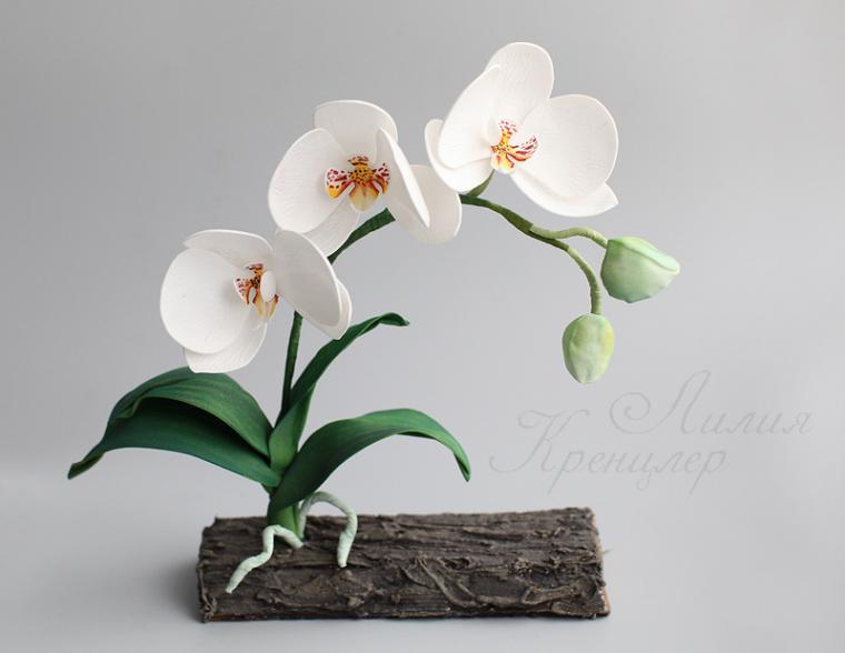 Орхидея из фома мастер класс