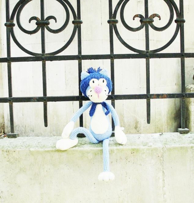 окно котята париж