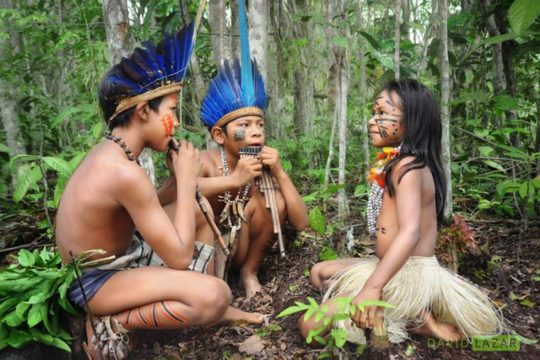 Секс каторый живуд джунгли
