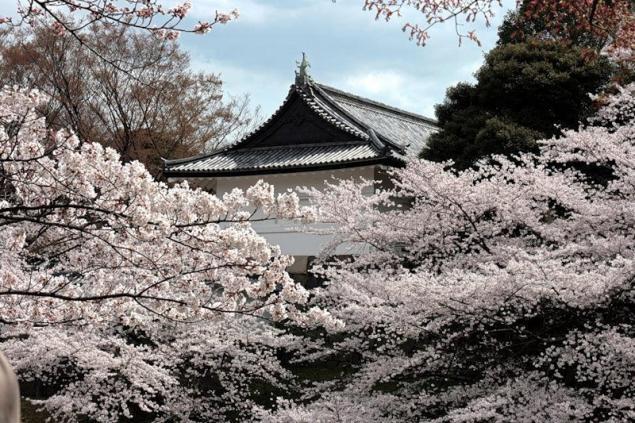 японские храмы