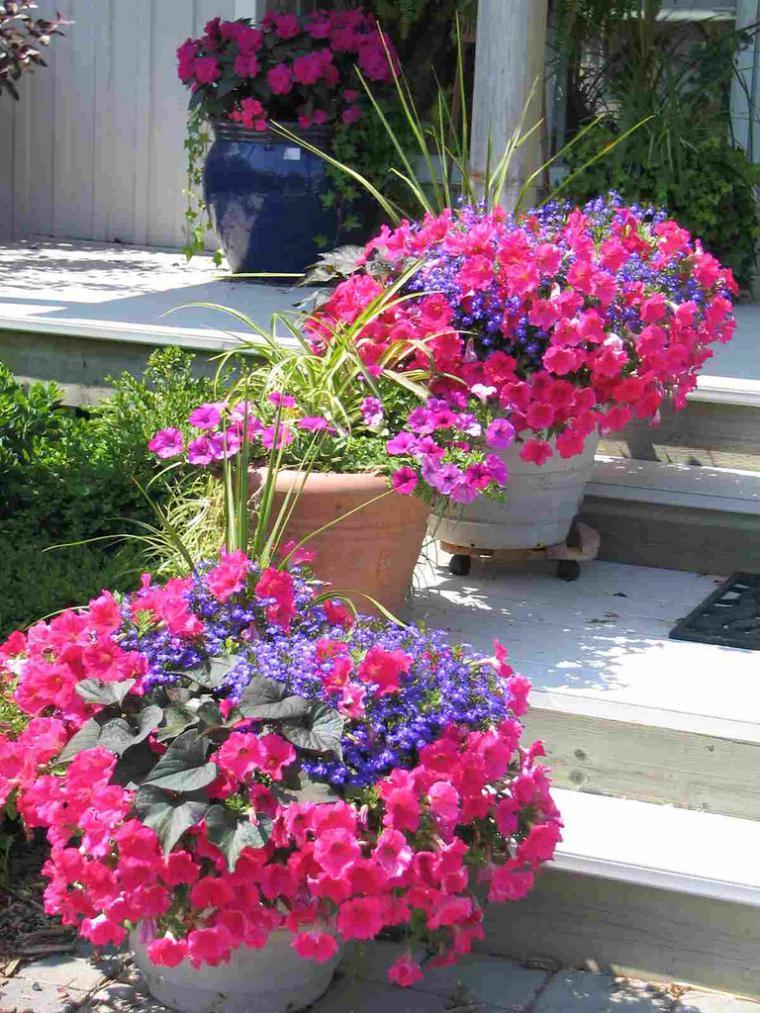 Красивые цветы в кашпо