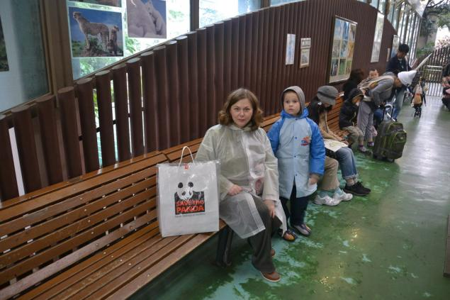 Дикий забег по Токио за 7 дней. День пятый. Зоопарк Уэно и детские магазины., фото № 26