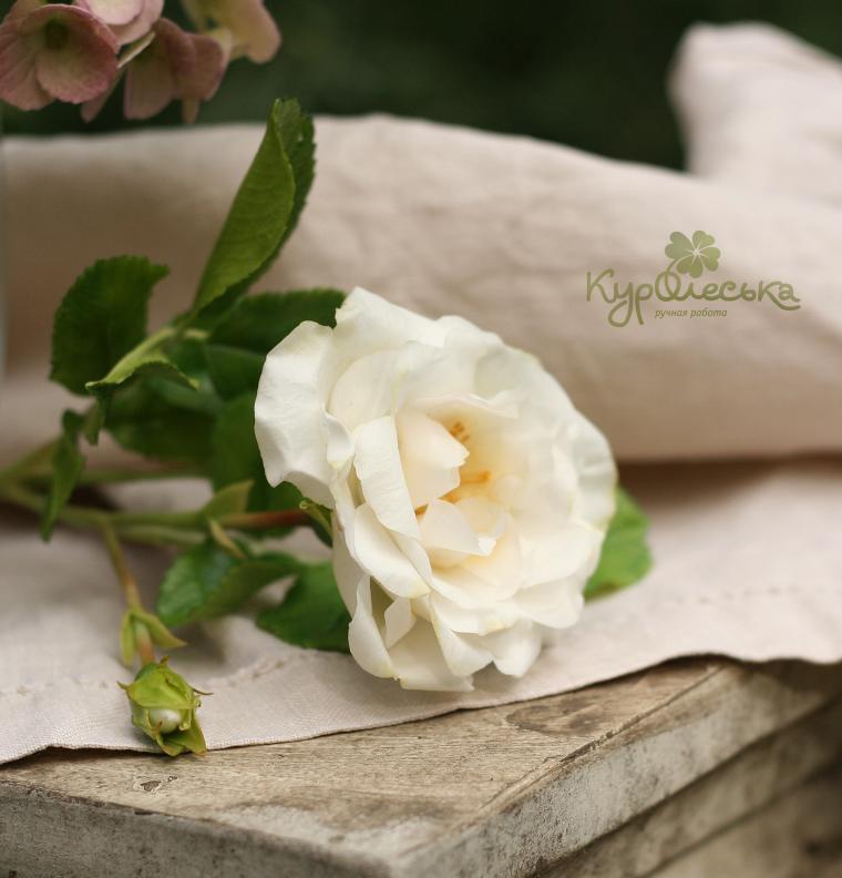 керамическая флористика, лепка цветов, как лепить цветы, махровый шиповник лепить