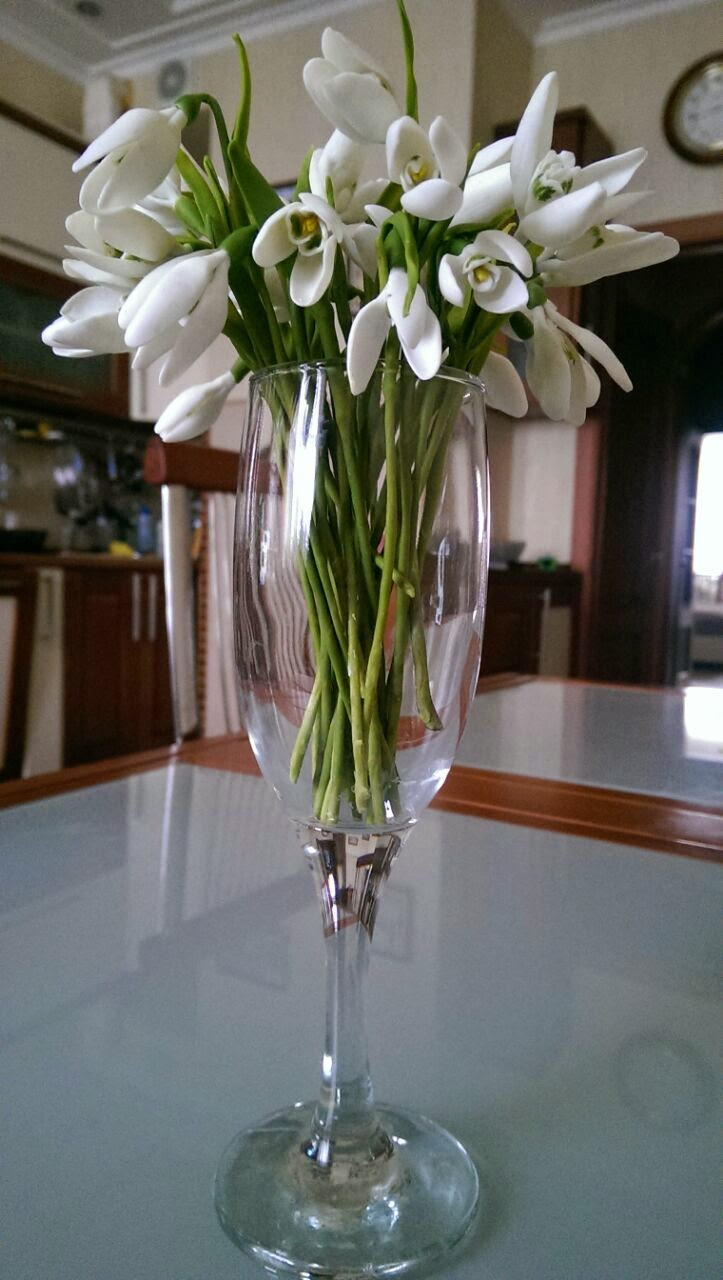 цветы из глины, лепка