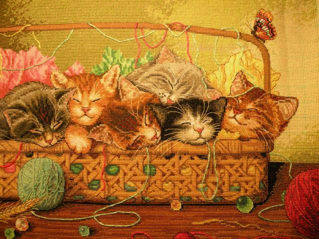 Новорожденный котята вышивка