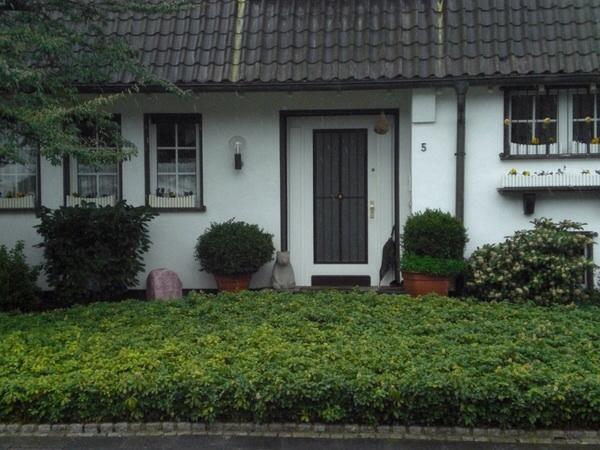 сады и палисадники