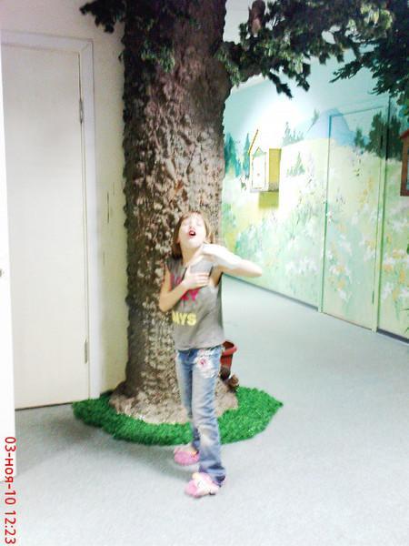Как сделать дерево из пены фото 859