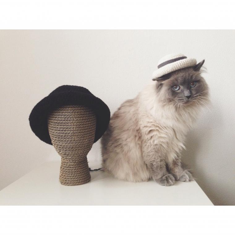 шляпа, шляпка, шляпа вязаная, шляпа крючком