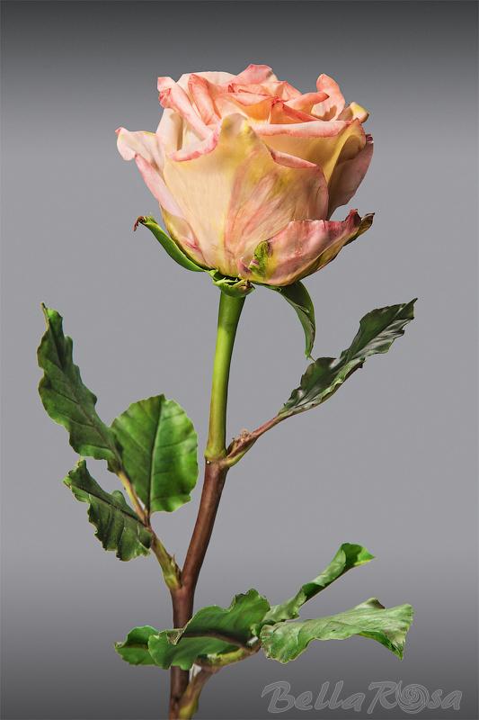 роза, лепка цветов