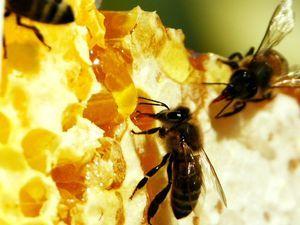 пчелиный воск, свечи ручной работы, оберег