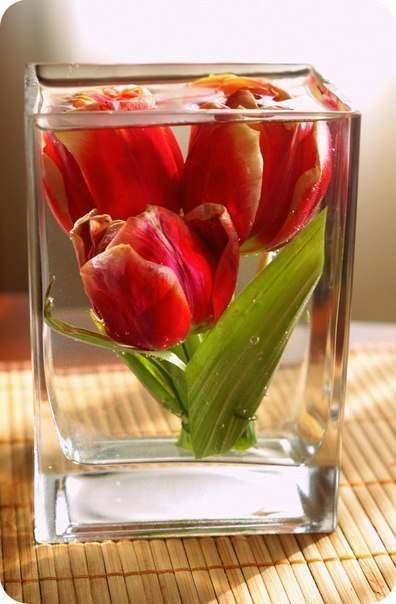 цветы, своими руками