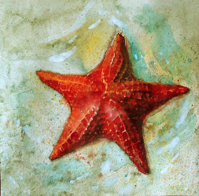 Как рисунки морская звезда