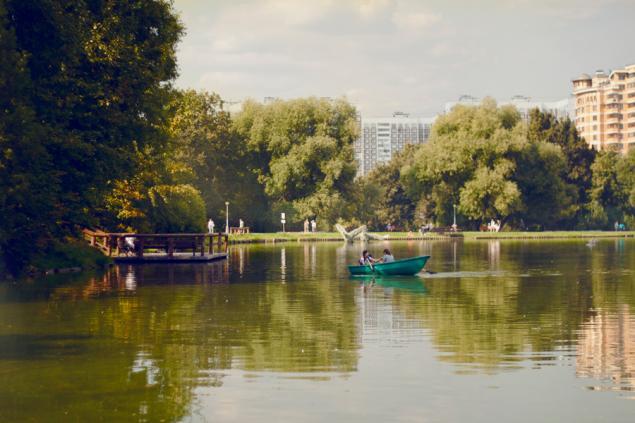 Яркая фотосессия с Моне и Ван Гогом!, фотосессия, фото, Москва, импрессионизм, Моне, Ван Гог