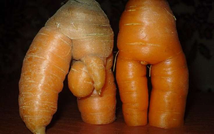 Смешные овощи и фрукты картинки фото