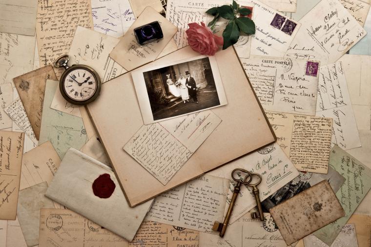 ботанический блокнот, дневник путешественника, ежедневник, блокнот для зарисовок, идеи для вдохновения, идеи для подарка
