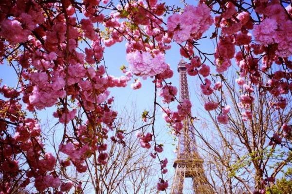 Весенний Париж, дыхание теплого ветра, фото № 24