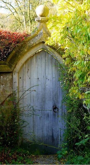 Я в саду! Заходите!, фото № 45