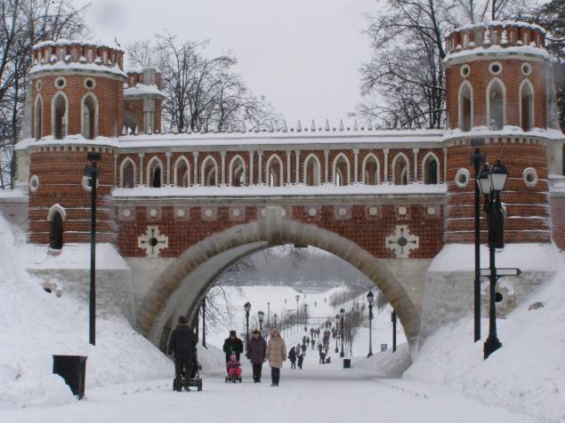 Царицыно в зимнем ракурсе., фото № 4