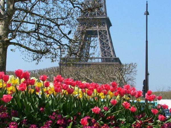 Весенний Париж, дыхание теплого ветра, фото № 2