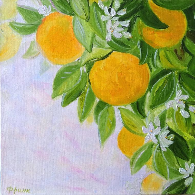 апельсин, парфюм, зелень, образ