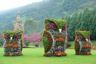 Owls in a garden!  Interesting decorations.