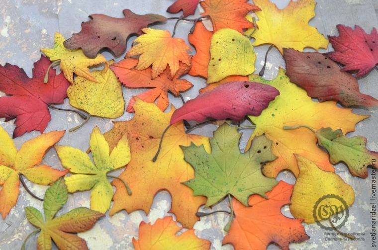 осень листики картинки