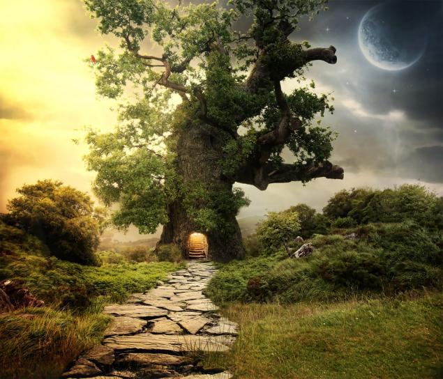 магия, древесина, талисман, лес, краснодеревщик, декор, столяр, колдовство, деревянный, волшебство