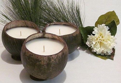 Поделки из кокоса из кожуры кокоса